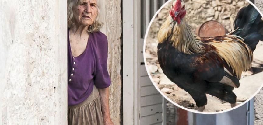 Dvije sestre u ratu sa svima:  Kako je kukurikanje upropastilo turizam u Stomorskoj na Šolti