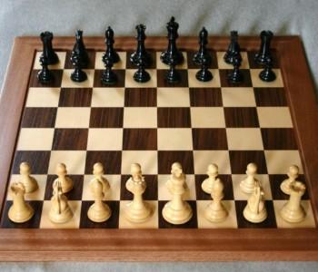 Turmir u šahu