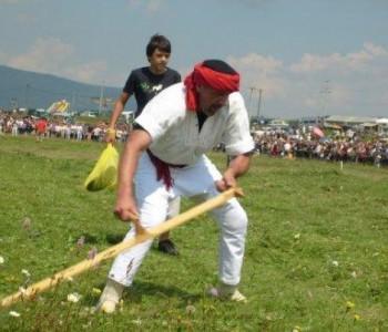 Dani kosidbe na Kupresu 2014. godine: Međunarodni festival folklora i Strljanica 2014.
