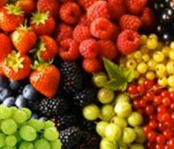 Javni poziv za odabir korisnika za podizanje nasada jagodičastog voća