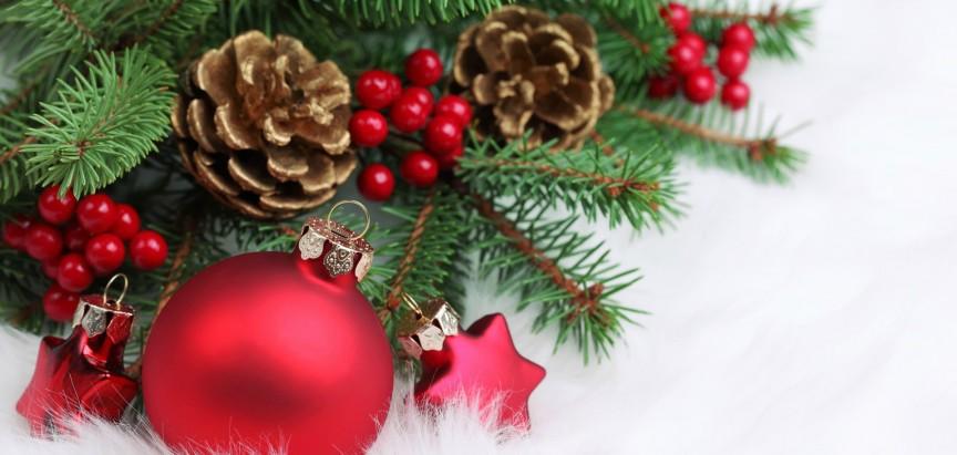 Male božićne zanimljivosti