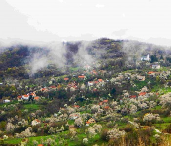 Proljeće na Kućanima