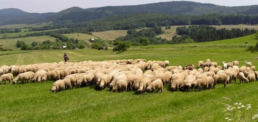 Je li je Federacija dobila 15 tisuća novih poljoprivrednika ili potrošača proračuna?