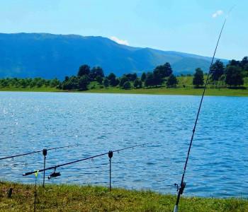 Na Ramskom jezeru se održava Premijer liga u lovu na šarana i amura