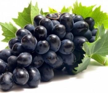 Japanac platio mjericu grožđa 11.000 dolara