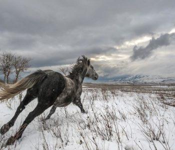 Balkan Photo Award: Traži se najljepša fotografija Balkana