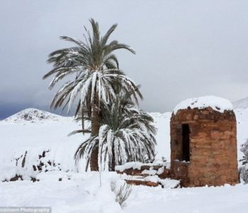 Snijeg stigao i u Saharu