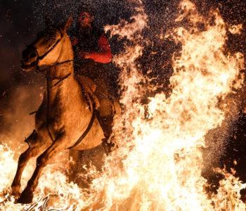 """Višestoljetni španjolski festival: Konji skokom kroz vatru """"čišćeni od grijeha"""""""