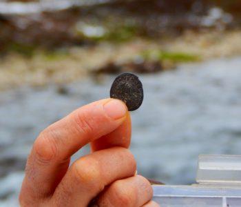 Što učiniti kada se pronađe neki arheološki ostatak?