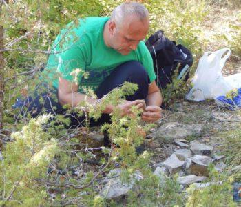 Paleontološko otkriće profesora Mire Pavličevića