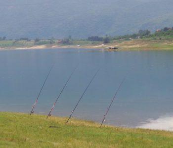 Istraživanje riblje populacije na Ramskom jezeru