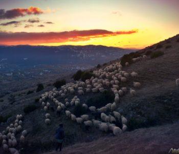Izlaz na planinu. Život i rad na planini