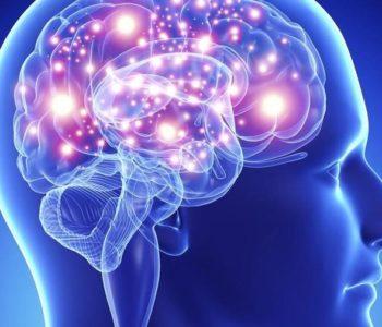 Žele hakirati mozak