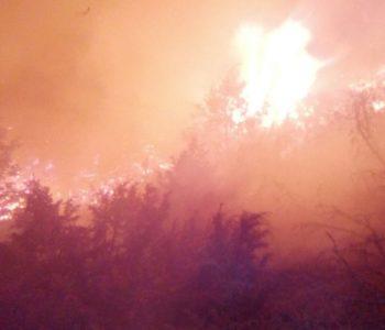 Unatoč upozorenjima ponovno požari