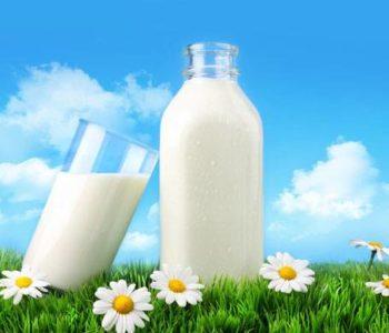 """Predavanje: """"Preporuke o uzgoju muznih krava, kvaliteti mlijeka i tehnologija proizvodnje sira""""."""