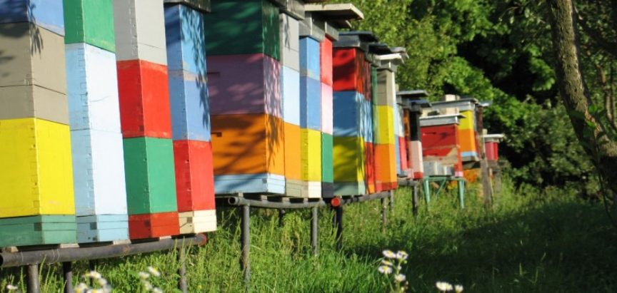 Treći međunarodni pčelarski sajam – Dani hercegovačkog meda