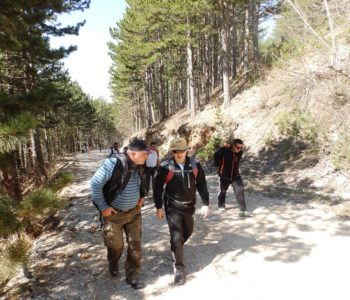 "HPD ""Rama"" sudjelovao u Memorijalnom planinarskom usponu na Prokos na Vran planini."