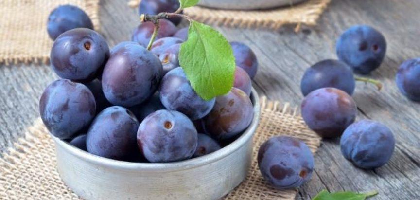 JAVNI POZIV  za odabir korisnika za revitalizaciju voćnjaka šljive i podizanje novih nasada šljive na području općine Prozor-Rama