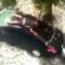 On očito obožava svoj auto čim ga na ovaj način štiti od tuče…
