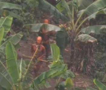 DOŠLI NA NJIHOVU ZEMLJU TRAŽEĆI ZLATO Rudari u amazonskoj prašumi izmasakrirali domorotce
