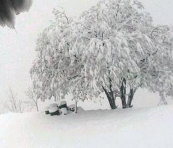Stiže li 10 dana polarne zime?