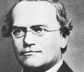 Gregor Mendel – svećenik koji je utemeljio modernu genetiku