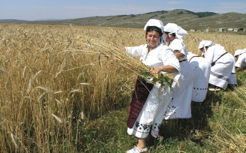"""HKUD """"Donja Rama""""  predstavlja narodne običaje Rame u Dalmaciji"""
