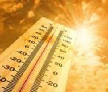 Smrtonosne vrućine: Ovo nije viđeno 50 godina