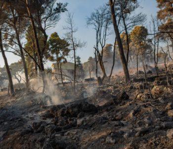 Zaustavljen požar kod Orebića, gori kod Metkovića