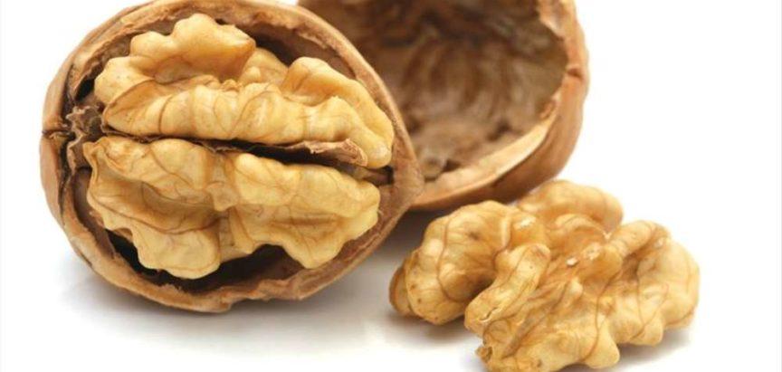 Orah – mali plod skriva tisuće tajni dobrog zdravlja