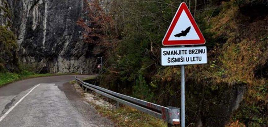 BiH prva na svijetu dobila znak koji upozorava na šišmiše