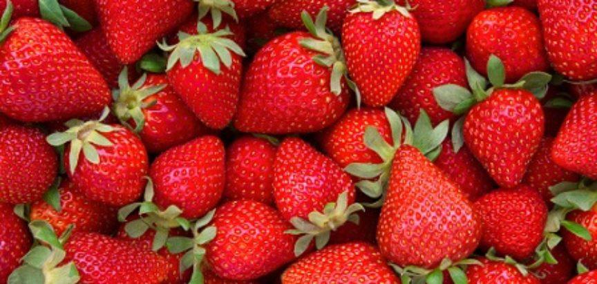 EKO PLOD: Obavijest za poljoprivredne proizvođače