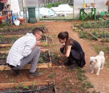 Edukacija: Proizvodnja organskog povrća u zaštićenom prostoru