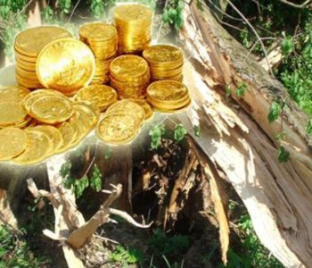 Sjekao hrast pa pronašao zlato