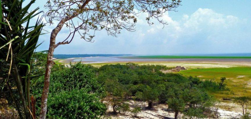 Svake minute iskrči se jedno i pol 'nogometno igralište' amazonske prašume