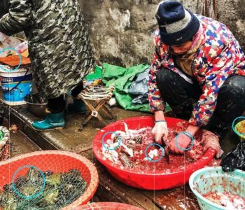 Ovo je tržnica u Wuhanu s koje je potekao koronavirus