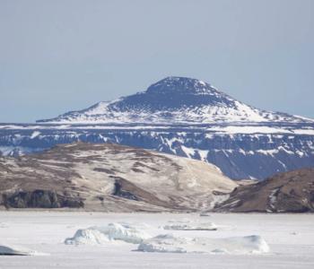 Znanstvenici u šoku: Prvi put u povijesti na Antarktici izmjereno više od 20 stupnjeva Celzijevih