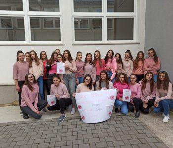 Vijeće učenika Srednje škole Prozor obilježilo Dan borbe protiv vršnjačkog nasilja