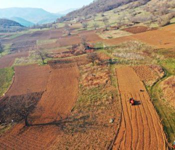 Poljoprivredni proizvođači mogu na njivu, ali moraju imati Potvrdu o upisu u Registar poljoprivrednih proizvođača