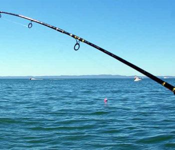 Odgađa se ribolovna sezona u HNŽ-u