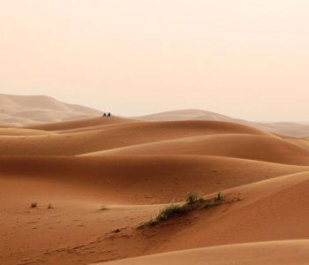 Sahara nije oduvijek bila pustinja