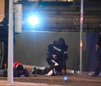 Za napade u Beču još 12 osumnjičenih, porijeklom većinom iz Čečenije i jugoistočne Europe