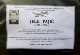 Jele Pajić