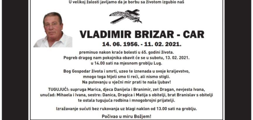 Vladimir Brizar (1956. – 2021.)
