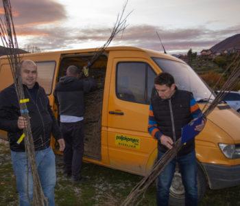 """Općina Prozor-Rama i """"Eko-plod"""" u prošloj godini podijelili 11 380 sadnica šljive"""