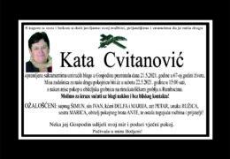 Kata Cvitanović