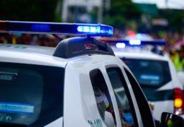 POLICIJSKO IZVJEŠĆE: Buran tjedan, pronađene stabljike kanabisa, ukradena krava, na džamiji iscrtani grafiti