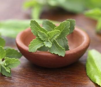 Ova biljka pomoći će u borbi protiv ovisnosti o pušenju i alkoholu