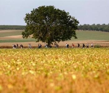 Mađarska diže ogradu prema Hrvatskoj; Slovenci ukidaju Schengen