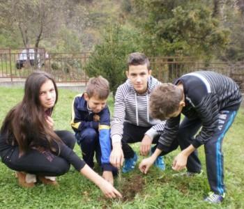 """OŠ """"Ivan Mažuranić"""" Gračac sudjelovala u akciji """"Let's Do It – milijun sadnica za 1 dan"""""""